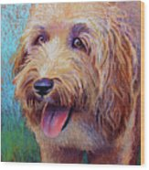 Mojo The Shaggy Dog Wood Print