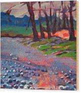 Molalla River Shore 7 Wood Print