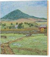 Mole Hill Panorama Wood Print