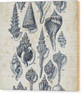 Mollusks - 1842 - 17 Wood Print