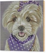 Molly The Maltese Wood Print
