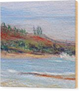 Moloa'a Beach Wood Print