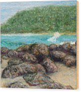 Moloa'a Rocks Wood Print