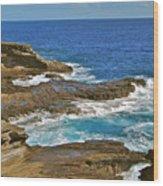 Molokai Lookout 0649 Wood Print
