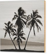 Molokai Palms Wood Print