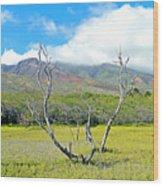 Molokai Surrealism Wood Print