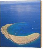 Molokini Crater Wood Print