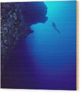 Molokini, Diver In Distance Wood Print