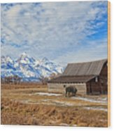 Molten Barn And Tetons 4 Wood Print