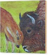 Mom And Baby Buffalo Calf Wood Print