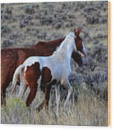 Mom And The Filly Leaving Wood Print
