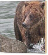 Mom Hunts Haines, Alaska Wood Print