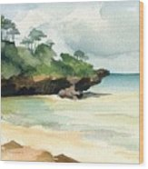 Mombasa Beach Wood Print by Stephanie Aarons