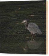 Moment Of The Heron Wood Print