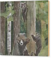 Momma With 4 Bear Cubs Wood Print