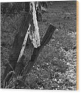 Momsvisitfence2 Wood Print