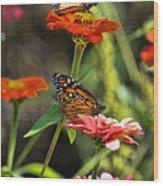 Monarch 8 Wood Print