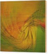 Monarch Abstract Wood Print