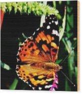 Monarch Butterfly # 2 Wood Print