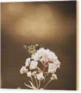 Monarch Butterfly 4 Wood Print