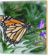 Monarch Butterfly 4 Wood Print