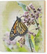Monarch Butterfly Blank Note Card Wood Print