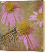 Monarch Butterfly In Pink Wood Print