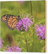 Monarch Butterfly On Bee Balm Flower Wood Print