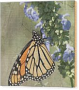 Monarch Butterfly Textured Background Wood Print