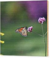 Monarch In Fall Garden 2011 Wood Print