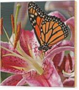Monarch On A Stargazer Lily Wood Print