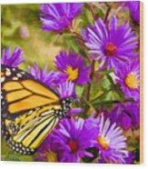 Monarch On Mt. Washington Wood Print