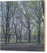 Monarch Park - 1100 Wood Print