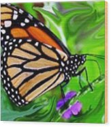 Monarch Swirl 1 Wood Print