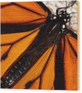 Monarch Triangles Wood Print