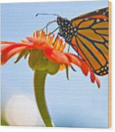Monarch Working Wood Print