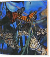Monarchs In Paradise Wood Print