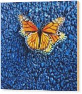 Monarchs Mating Wood Print