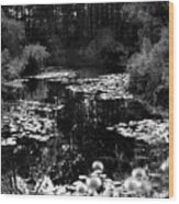 Monet Lake Wood Print