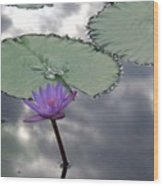 Monet Lily Pond Reflection  Wood Print