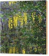 Monet's Garden Abstract II Wood Print