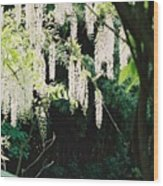Monet's Garden Delights Wood Print