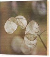 Money Plant Wood Print