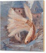 Mongo Betta Fish Wood Print by Brenda Thour