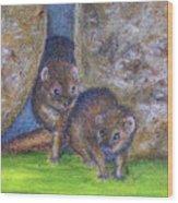 Mongoose #511 Wood Print