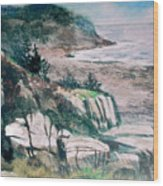 Monhegan Trail Wood Print