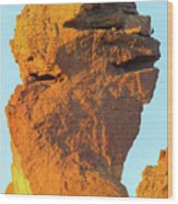 Monkey Face Pillar At Smith Rock Closeup Wood Print