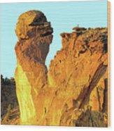 Monkey Face Pillar At Smith Rock Wood Print