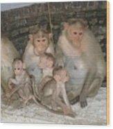 Monkey Family Tiruvannamalai India Wood Print