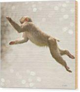 Monkey Jump Wood Print